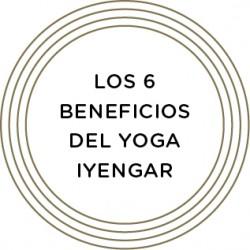 MARIA_trayectoria_boton 6 beneficios